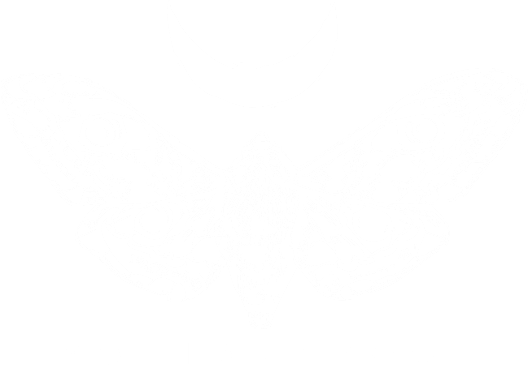 moth and moon
